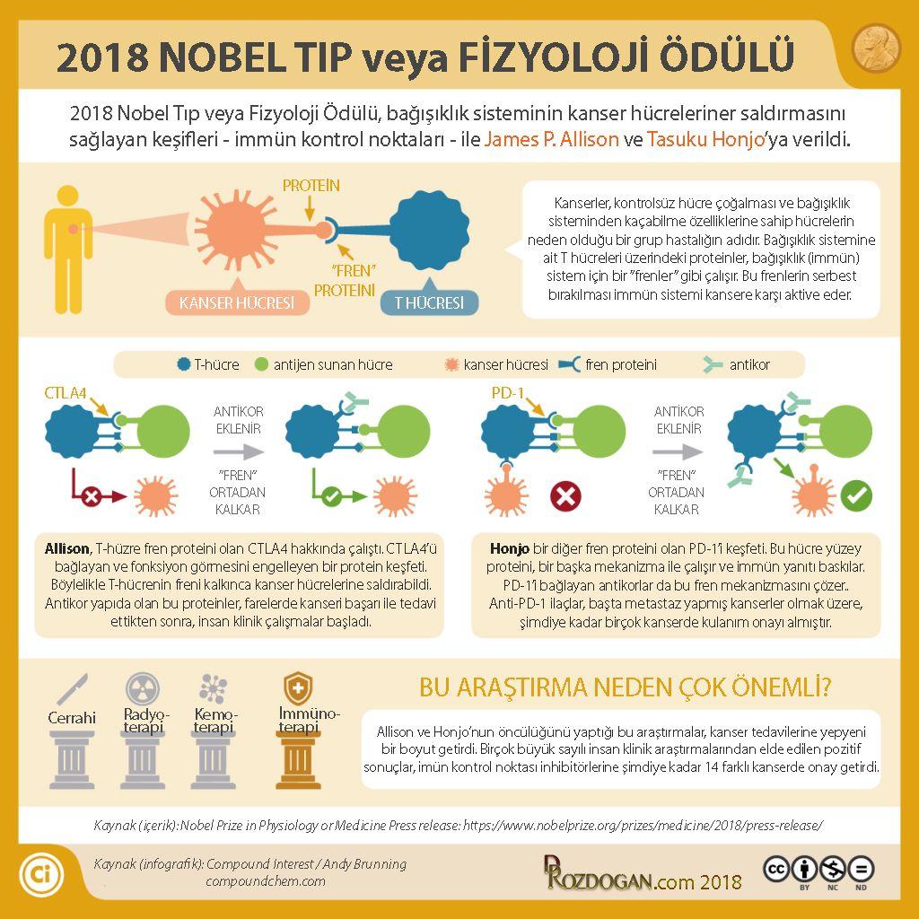 2018 nobel tıp veya fizyoloji ödülü kanser immünoterapi allison honjo infografik