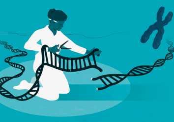 2020 Nobel Kimya Ödülü – Genetik Makas CRISPR-Cas9