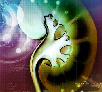 4. evre böbrek kanseri ilk basamak tedavisi olarak immünoterapi ve akıllı ilaç kombinasyonu