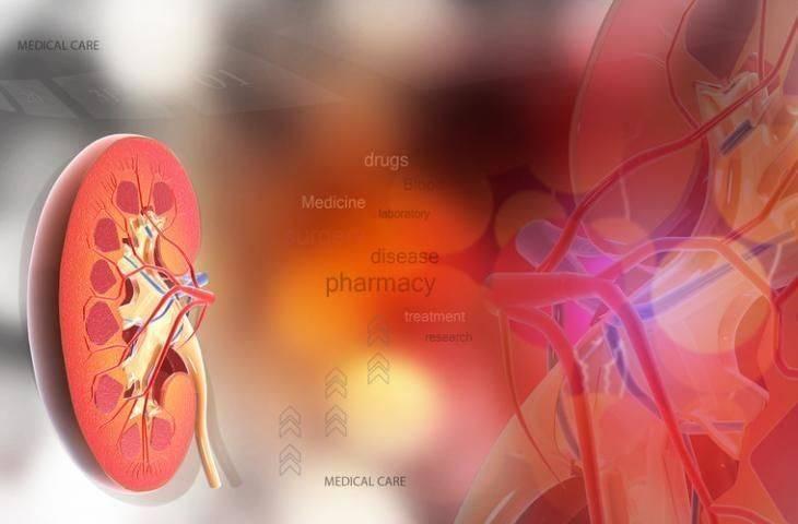 4. evre hastalıkta kanserli böbrek ameliyatla alınmalı mı?
