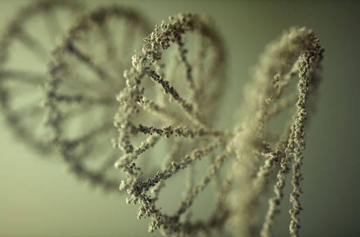 4. evre kolon ve rektum kanserinde V600-dışı BRAF mutasyonu iyi hastalık seyrinin göstergesi