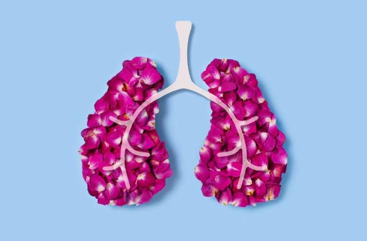4. evre küçük hücreli dışı akciğer kanseri birinci basamak tedavisi için nivolumab artı ipilimumab ve kemoterapi FDA onayı aldı