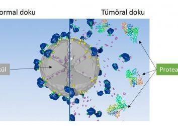 Akciğer Kanserinde Tümörü Hedef Alan Yeni Bir Silah: Nanotanecikler