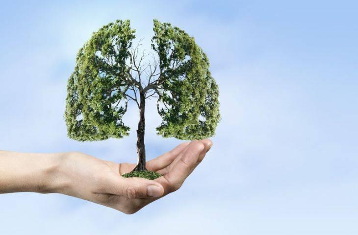 Akciğer kanseri tedavisinde yenilikler – 2017 Dünya Akciğer Kanseri Kongresi