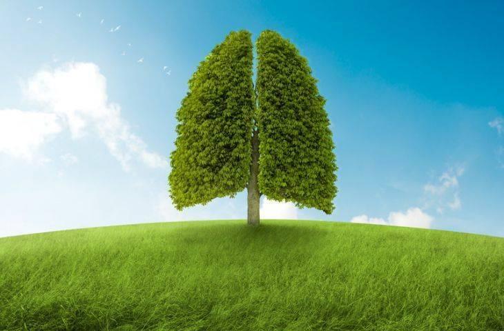 Akciğer kanseri tedavisinde yenilikler - 2017 ve 2018