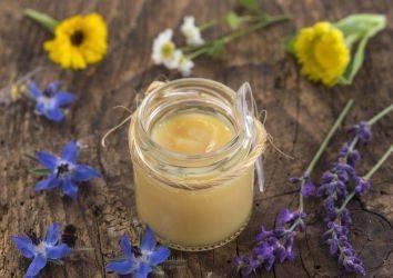 Arı sütü nedir? Faydaları, yan etkileri ve kanserde denenmesi