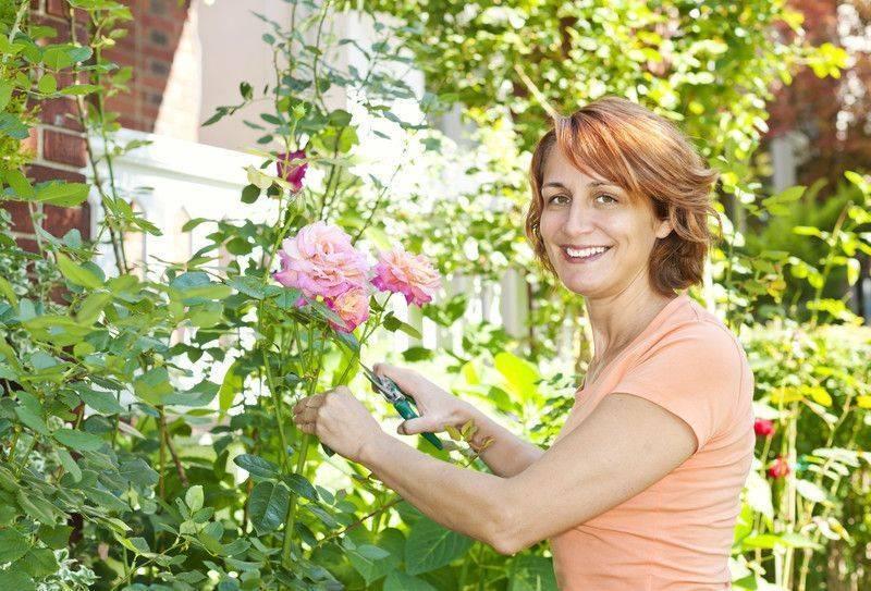 Bahçe işleri toprağa yakın olmanın huzuru