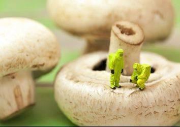 Beslenmeye farklı bakış: DNA tabanlı diyetler & Nutrigenomik