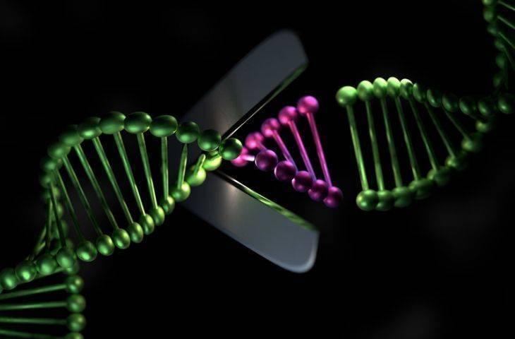 Bilimde Devrim Yaratan Buluş: Genetik Mühendisliği ile CRISPR-Cas9