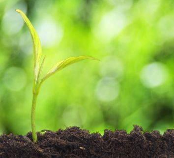 Büyüme faktörleri ve kanser