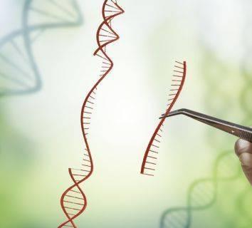 CRISPR ile 2017'de gerçekleştirilen 9 çığır açıcı gelişme