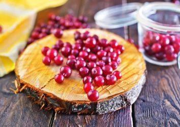 Cranberry - turna yemişi ve kanser tedavisi