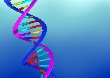 DNA nedir? DNA hasarı kanserleşmeyi nasıl etkiler?