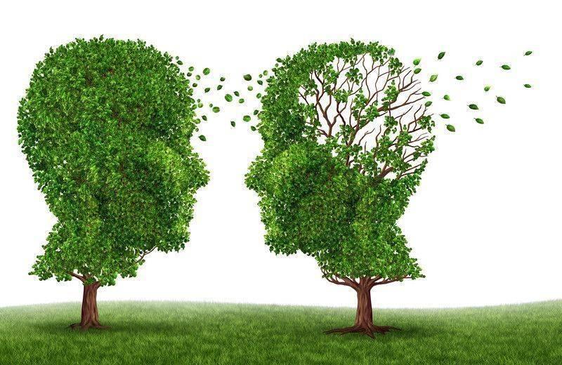 Demans bunama ve Alzheimer için diyetler