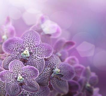 Desmoid tümör nedir? Belirtileri nelerdir ve nasıl tedavi edilir?