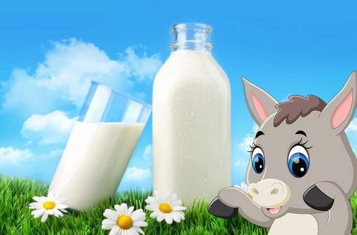 Eşek sütü nedir? Kanser tedavisinde yeri var mıdır?