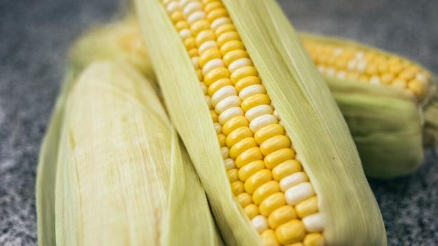 Genetiği değiştirilmiş gıdalar güvenli midir