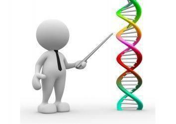Genler için de Eğitim Şart! Kanserde Epigenetik Tedaviler