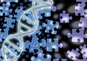 Germline genetik test ile KALITSAL prostat kanserini belirlemek