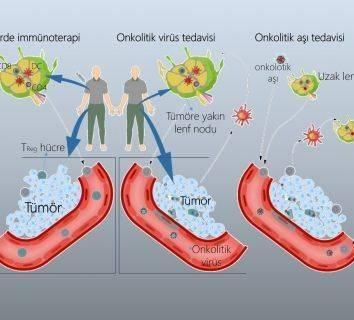 İmmunoterapi ve ötesi: kanser aşısı