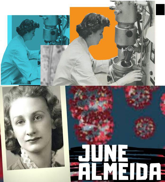June Almeida koronavirüsü keşfeden bilim kadını