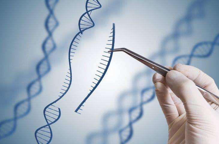 Kalıtsal kanserlerin araştırılmasında CRISPR genetik tekniği kullanılacak