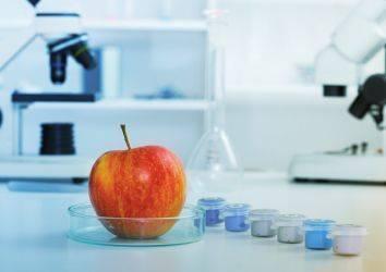 Kanser tedavisi sırasında ve sonrasında gıda güvenliği