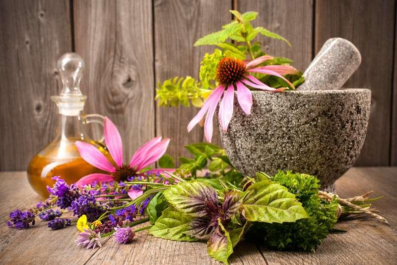 Kanser tedavisinde bitkisel ürünlerin neden işe yaramadığını biliyor musunuz