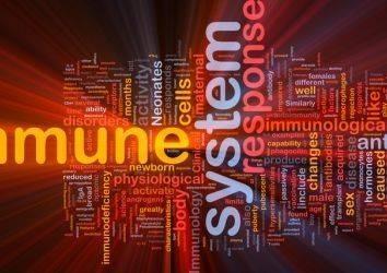 Kanser tedavisinde immünoterapinin uzun vadedeki etkinliği D vitamini ile arttırılabilir mi?