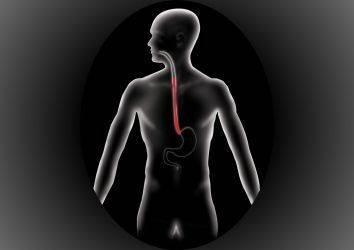 Kanser türlerine göre tanı ve tedavi bölümüne özofagus (yemek borusu) kanseri bölümü eklendi
