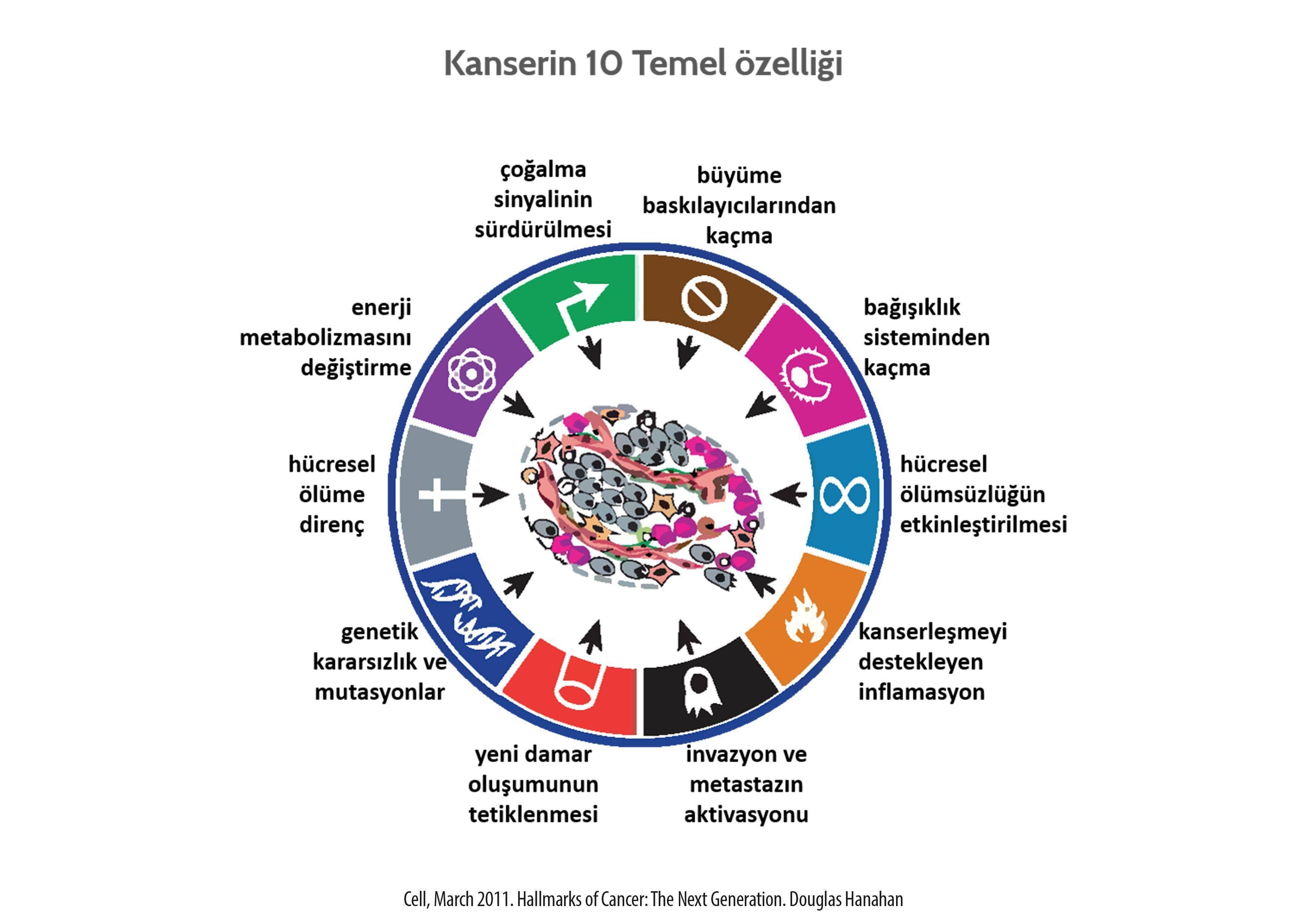 Kanserin 10 temel ozelligi