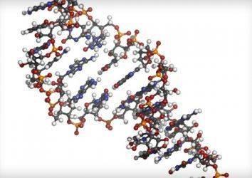Kolorektal kanserin erken tanısında yeni bir yöntem; kanda mikro RNA-21 düzeyi