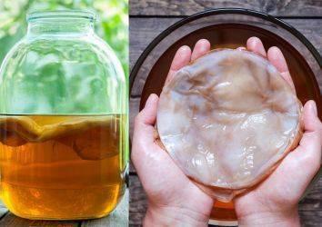 Kombu çayı nedir? İnanılmaz faydalı mı yoksa yeni bir aldatmaca mı?