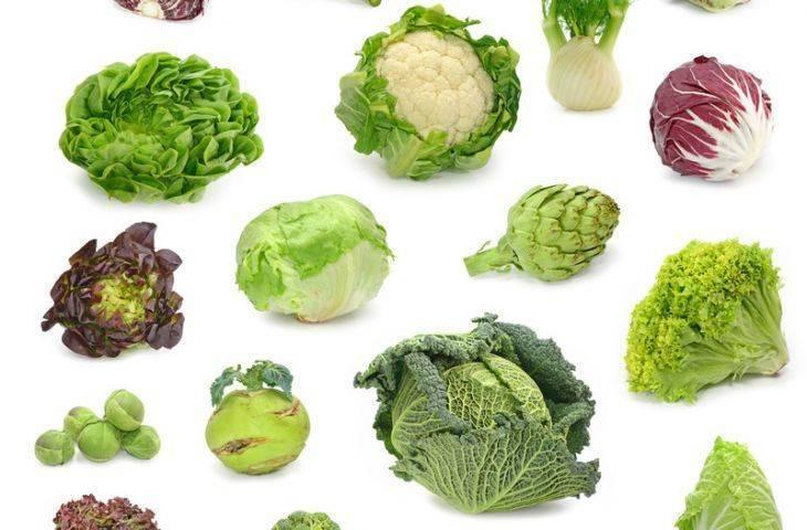 Lahana ve turpgillerin faydaları – sağlıklı bir lahana çorbası tarifi