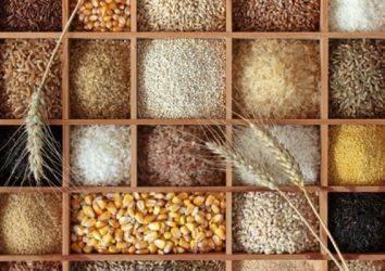 Liften zengin beslenme barsak kanseri riskini azaltır mı?