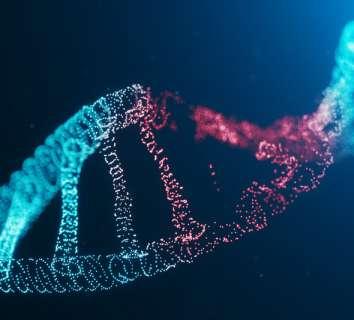 Kanser yapıcı maddelerin neden olduğu mutasyonların haritası çıkarıldı