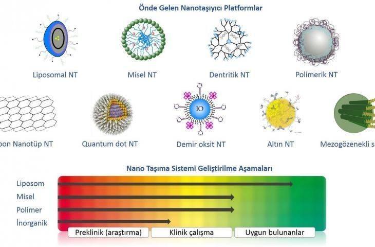 Nanotanecik nedir, örnekleri nelerdir? Kanser tanısında nanoteknoloji