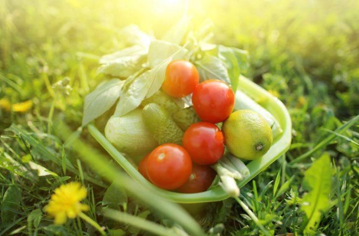 Nasıl beslenmeliyim? 6 önemli ipucu