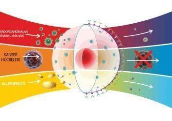 Nöroendokrin tümörlerde radyoterapi – ışın tedavisi