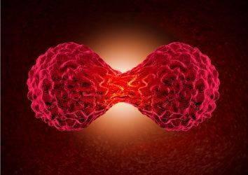 Onkoloji nedir?
