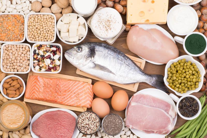 Protein içeriği yüksek olan  ve sağlıklı 20 besin