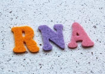 RNA nedir, ne işe yarar? Kanser tanı ve tedavisinde kullanımı