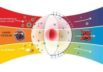 Serviks – rahim ağzı kanserinde ısı – hipertermi tedavisi