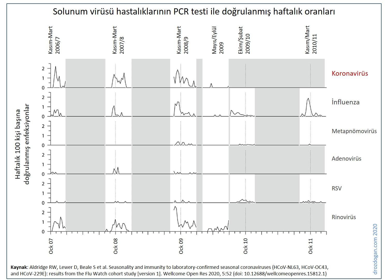 Solunum virüsü hastalıklarının PCR testi ile doğrulanmış haftalık oranları