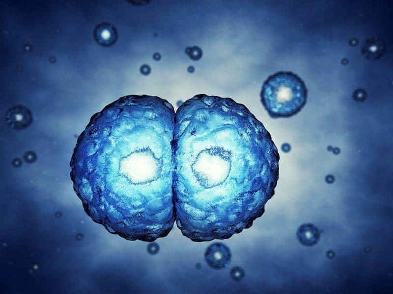 Tedaviye dirençli kanserler için çözüm ışığı Mikro RNA kullanımı