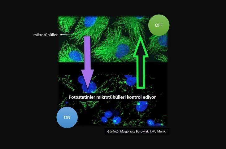 Yeni bir kemoterapi tekniği: ışıkla kemoterapi