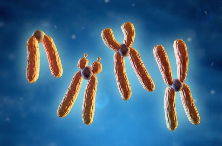 Yumurtalık kanseri kalıtsal mıdır? Genetik risk faktörleri nelerdir?