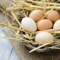 Yumurtanın faydaları ve besin değerleri