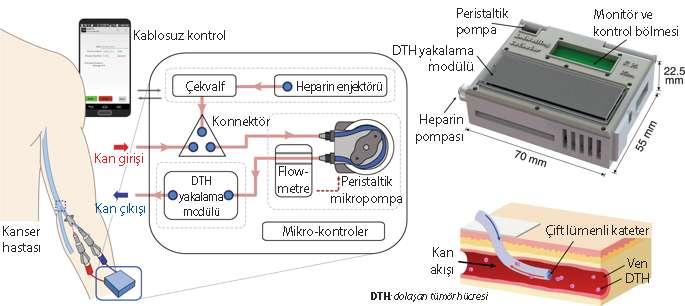 aferez damar içinde kateteri bulunan likit biyopsi çipi