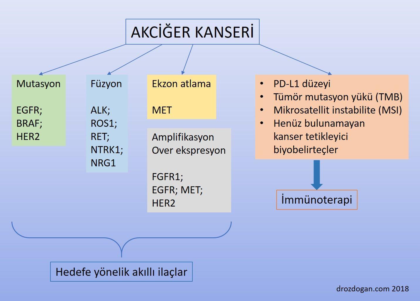 akciğer kanseri akıllı ilaç hedefleri genetik değişimler biyobelirteçler mutasyon